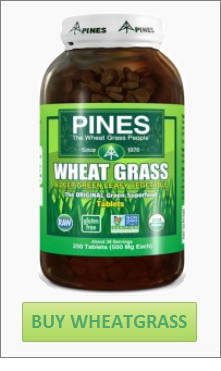 where-to-buy-wheatgrass