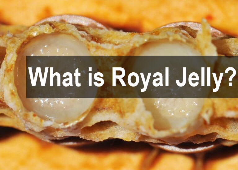 what is royal jelly 1