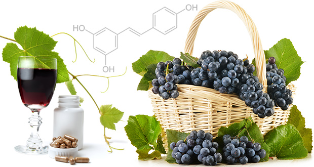 where to buy resveratrol supplement