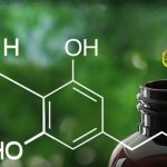 5 Things You Didn't Know About CBD
