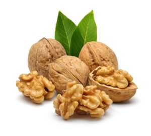 walnut for the brain