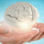 The Essentials to a Healthy Brain